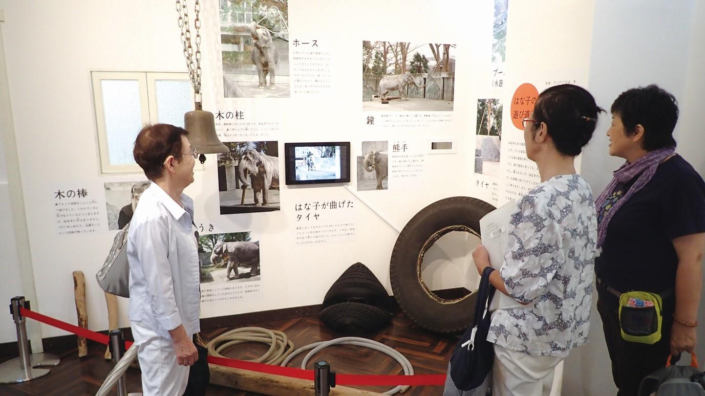 今月のはな子|第30回「資料館特設展示『アジアゾウはな子の69年』」
