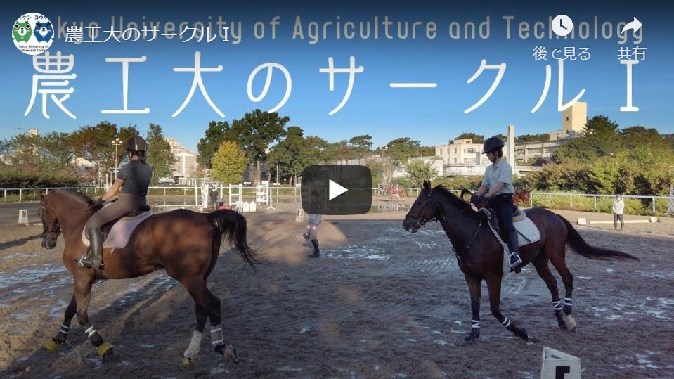 [制作事例]動画:東京農工大学様「農工大のサークル」