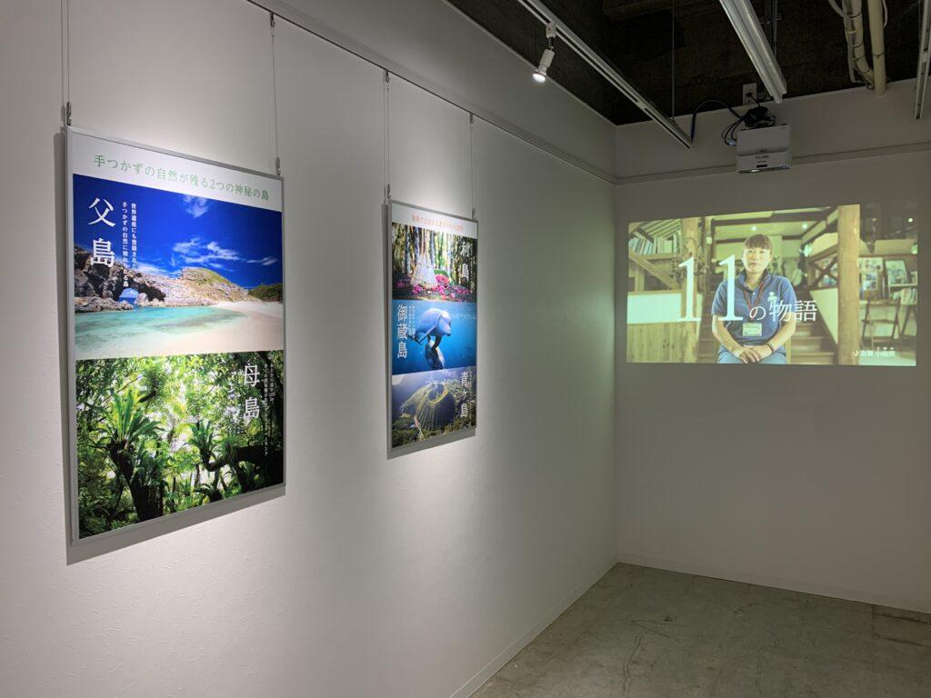 PENNY LANE GALLERYでの「 プチ島体験展 」4